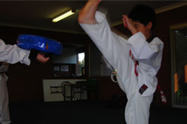 ati martial arts tae kwon do